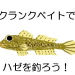 初心者も手軽にハゼクランクを楽しもう!釣りポイントとタックル・ルアーを紹介