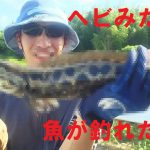 豊田市の某河川でナマズを狙ってたら、バカデカいヘビみたいな魚が釣れた!