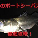 プロ直伝! 冬にボートシーバスで魚を釣って楽しむタックルやルアーの使い方!
