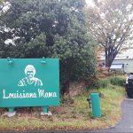 豊田市豊栄町ルイジアナママのパスタとデザートは絶品!予約無しでランチに入れる時間帯もご紹介!